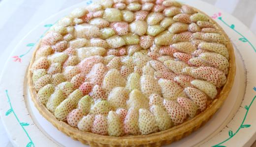 季節ごとに旬のフルーツが飾られる【annies アニーズ】の人気タルトは、お誕生日などの贈りものにも喜ばれますよ!