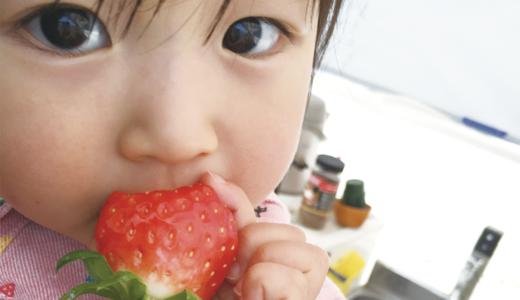 イオンモール甲府昭和すぐ横の好立地に位置するいちご園「みない」で充実した1日を過ごしませんか!!
