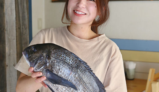 漁師さんから直接届くお魚たち🐟