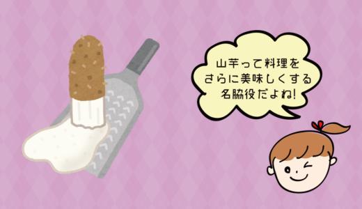13 山芋が好きなのでおすすめの山芋料理教えてください(ポコ)